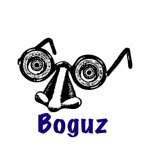 Boguz.com – $2700
