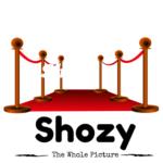 Shozy.com – $2800
